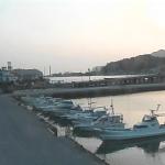 ひらおボートパークライブカメラ(山口県平生町東水場)