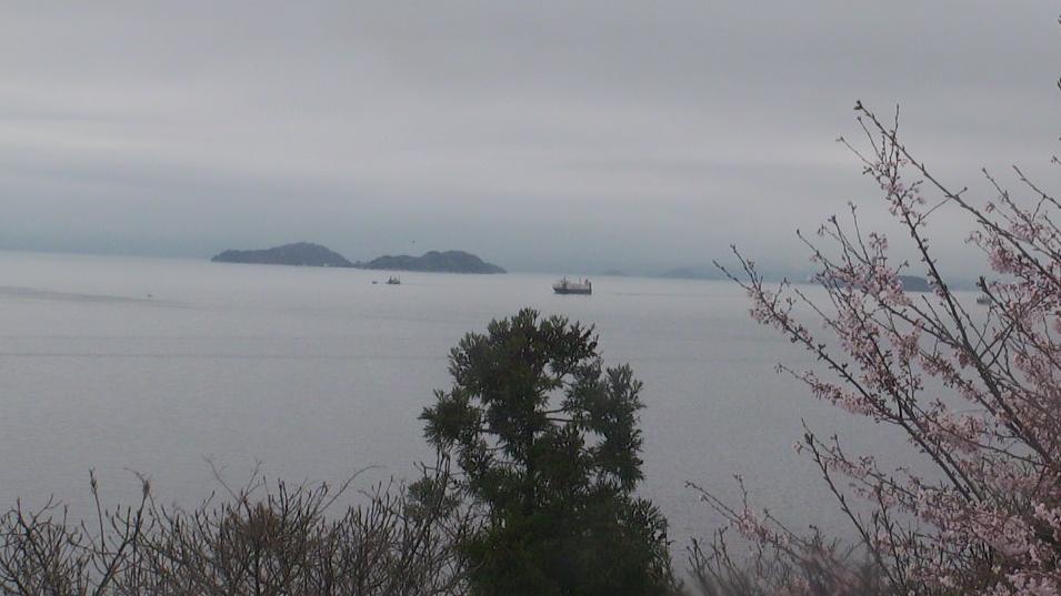 豊島船の見える丘から瀬戸内海・桜