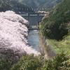 島ノ瀬ダムライブカメラ(和歌山県みなべ町東神野川)