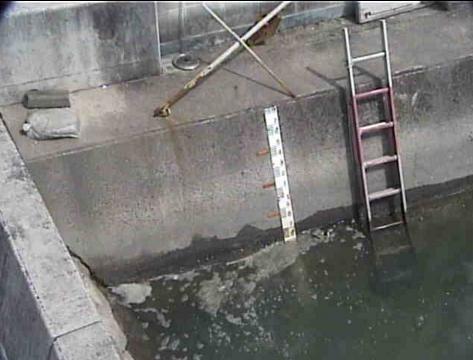 笠岡港水位