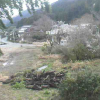 風の便り裏手ライブカメラ(熊本県阿蘇市一の宮町)