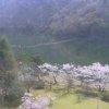 KBS大野ダムライブカメラ(京都府南丹市美山町)
