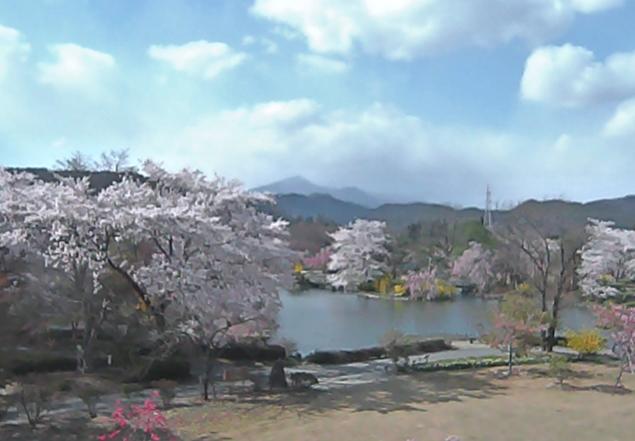 四季の里緑水苑から桜庭園・安達太良山・ソメイヨシノ・シダレザクラ・河津桜・山桜・八重桜
