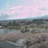 開成山公園ライブカメラ(福島県郡山市開成)