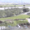 加勢川熊本河川国道事務所緑川下流出張所ライブカメラ(熊本県熊本市南区)