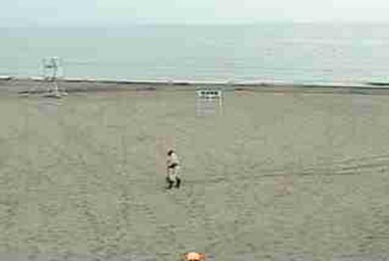 小松海水浴場ライブカメラは、徳島県徳島市川内町の小松海岸緑地に設置された小松海水浴場が見えるライブカメラです。