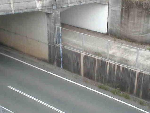 熊本県道112号長洲玉名線長洲JRガード下冠水