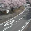 内宮B3駐車場付近ライブカメラ(三重県伊勢市宇治浦田)