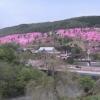 芝ざくら滝上公園ライブカメラ(北海道滝上町滝ノ上市街地)