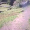 ラハイナドッグランライブカメラ(岡山県瀬戸内市牛窓町)