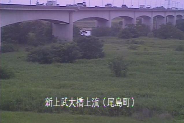 利根川新上武大橋上流ライブカメラは、群馬県太田市武蔵島町の新上武大橋上流に設置された利根川が見えるライブカメラです。