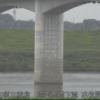 利根川埼玉大橋下流水位監視ライブカメラ(埼玉県加須市麦倉)