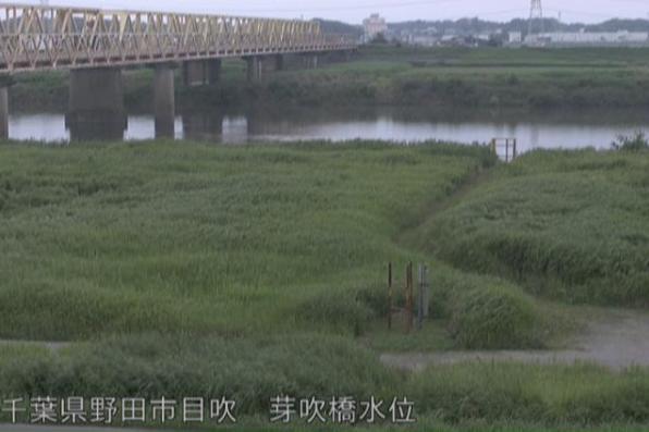 利根川芽吹橋水位観測所ライブカメラは、千葉県野田市目吹の芽吹橋水位観測所に設置された利根川が見えるライブカメラです。