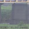 利根川莚打水位監視ライブカメラ(茨城県坂東市莚打)