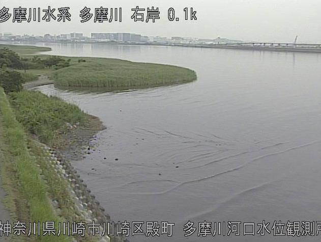 多摩川多摩川河口水位観測所ライブカメラは、神奈川県川崎市川崎区の多摩川河口水位観測所に設置された多摩川が見えるライブカメラです。