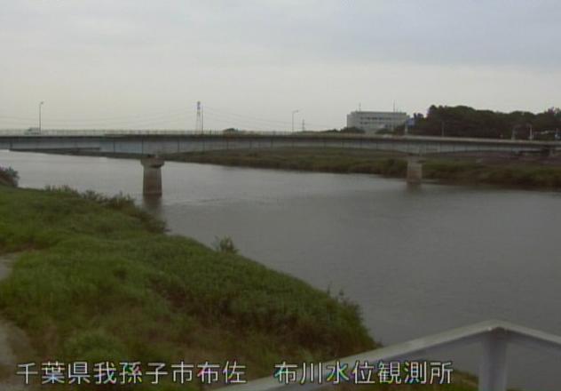 千葉県我孫子市布佐の布川水位観測所に設置された利根川が見えるライブカメラです。