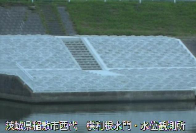 茨城県稲敷市西代の横利根水位観測所に設置された利根川が見えるライブカメラです。