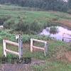 高麗川坂戸水位観測所ライブカメラ(埼玉県坂戸市上吉田)