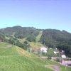 ダイナランドゆり園ライブカメラ(岐阜県郡上市高鷲町)