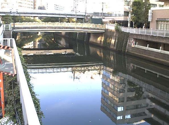 目黒川市場橋ライブカメラは、東京都品川区西五反田の市場橋に設置された目黒川が見えるライブカメラです。