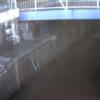 立会川桜橋ライブカメラ(東京都品川区東大井)