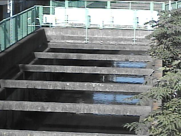 千ノ川室田橋ライブカメラは、神奈川県茅ヶ崎市室田の室田橋に設置された千ノ川が見えるライブカメラです。