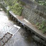 有馬川五月橋ライブカメラ(神奈川県川崎市高津区)