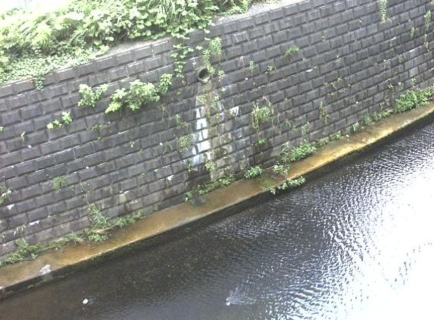 麻生川片平川合流ライブカメラは、神奈川県川崎市麻生区の片平川合流に設置された麻生川が見えるライブカメラです。