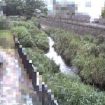 阿久和川伊勢堰橋ライブカメラ(神奈川県横浜市泉区)