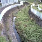 名瀬川栄橋ライブカメラ(神奈川県横浜市戸塚区)