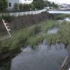平戸永谷川外郷橋ライブカメラ(神奈川県横浜市戸塚区)