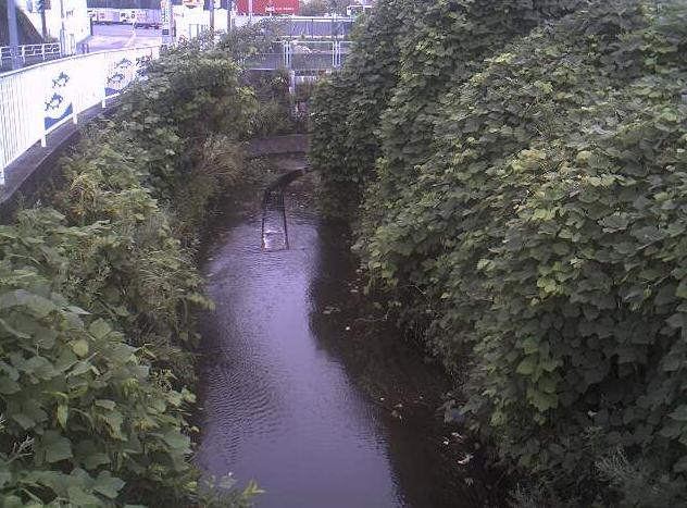 芹谷川永戸人道橋ライブカメラは、神奈川県横浜市港南区の永戸人道橋に設置された芹谷川が見えるライブカメラです。