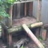 対馬野生生物保護センターツシマヤマネコライブカメラ(長崎県対馬市上県町)