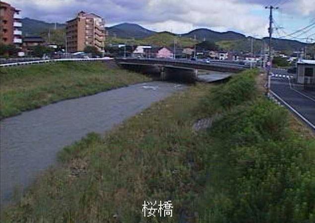 紫川桜橋下流ライブカメラは、福岡県北九州市小倉南区の桜橋下流に設置された紫川が見えるライブカメラです。