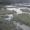 紫川桜橋上流ライブカメラ(福岡県北九州市小倉南区)