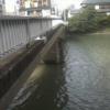 那珂川稲荷橋ライブカメラ(福岡県福岡市博多区)