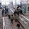 JF糸島志摩の四季ライブカメラ(福岡県糸島市志摩津和崎)