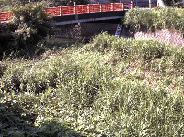宇美川参宮橋ライブカメラは、福岡県宇美町井野の参宮橋に設置された宇美川が見えるライブカメラです。