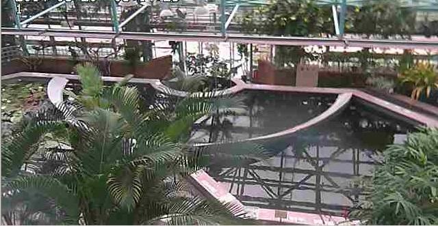 水生植物公園みずの森温室ライブカメラは、滋賀県草津市下物町の草津市立水生植物公園みずの森に設置された温室が見えるライブカメラです。