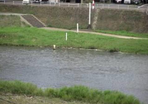 土岐川左岸ライブカメラは、岐阜県多治見市青木町の土岐川左岸に設置された土岐川が見えるライブカメラです。
