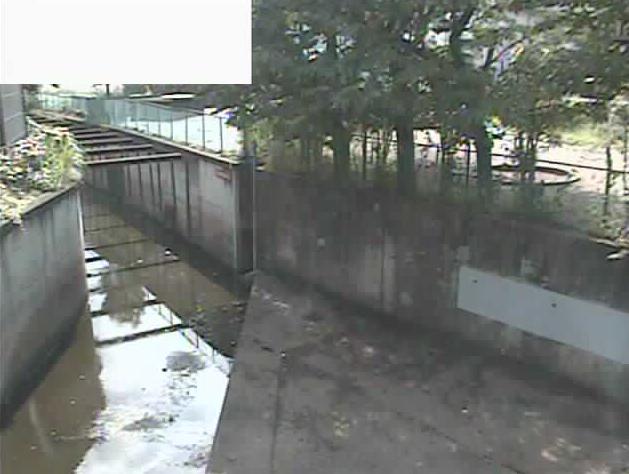 石神井川芝久保ライブカメラは、東京都西東京市芝久保町の芝久保に設置された石神井川が見えるライブカメラです。