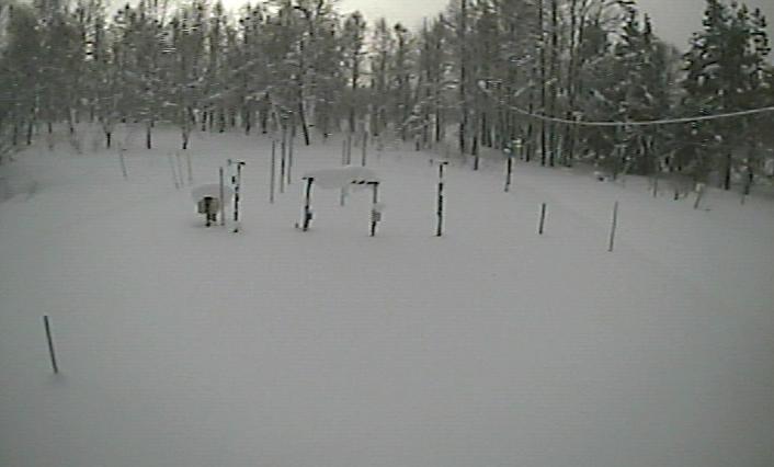 北海道大学低温科学研究所融雪観測室ライブカメラは、北海道幌加内町母子里の北海道大学低温科学研究所融雪観測室に設置された観測露場が見えるライブカメラです。