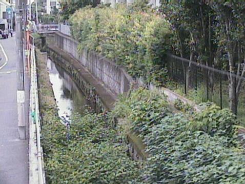 丸子川治大夫橋ライブカメラは、東京都世田谷区玉川の治大夫橋に設置された丸子川が見えるライブカメラです。
