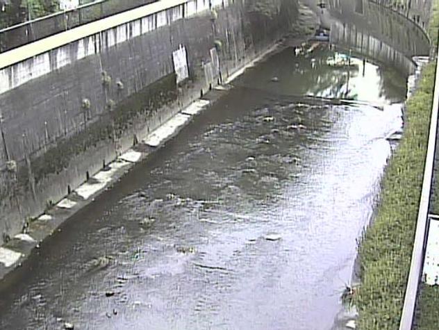 石神井川松橋ライブカメラは、東京都北区王子本町の松橋に設置された石神井川が見えるライブカメラです。