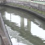 石神井川新柳橋ライブカメラ(東京都北区豊島)