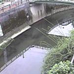石神井川観音橋ライブカメラ(東京都北区滝野川)