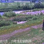 辺別川18号水位観測所ライブカメラ(北海道旭川市西神楽)