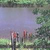 雨竜川多度志水位観測所ライブカメラ(北海道沼田町共成)