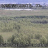 石狩川奈井江大橋水位観測所ライブカメラ(北海道浦臼町黄臼内)
