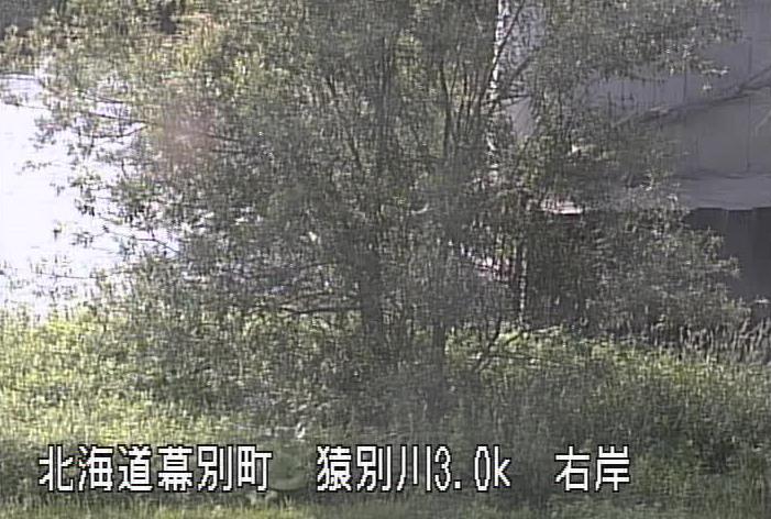 猿別川止若水位観測所ライブカメラは、北海道幕別町本町の止若水位観測所(止若水位流量観測所)に設置された猿別川が見えるライブカメラです。